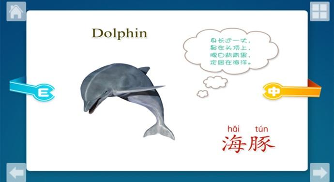 宝宝识海洋生物tv版具体动物界面