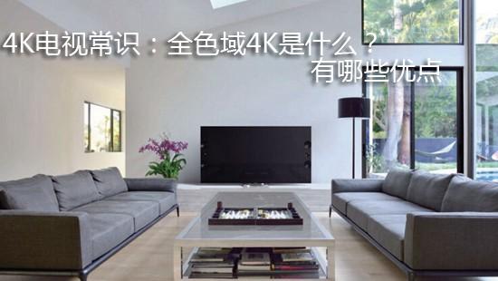 4K电视常识:全色域4K是什么?有哪些优点