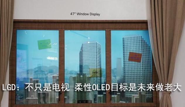 LGD:不只是电视 柔性OLED目标是未来做老大